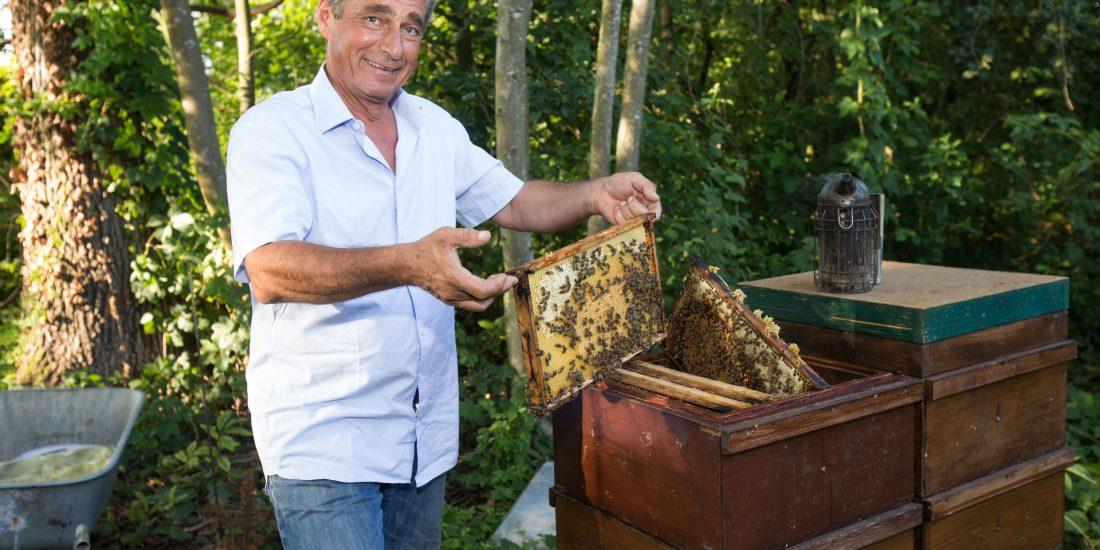 Klubobmann Mahr: Neuregelung für Bienenhaltung kommt